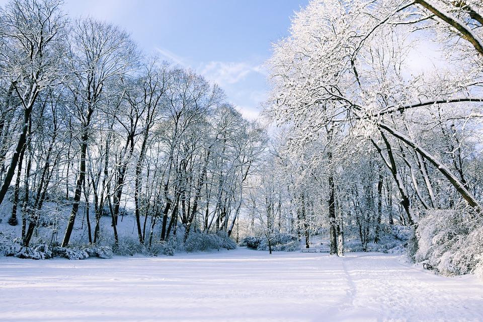Winterpause 2016/17